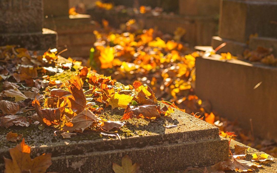 Who's Buried Here?